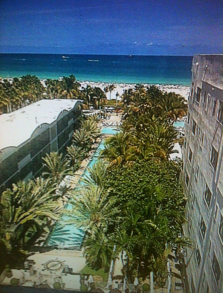 The National Hotel Miami Beach | Our Iconic Infinity Pool & Beach ...