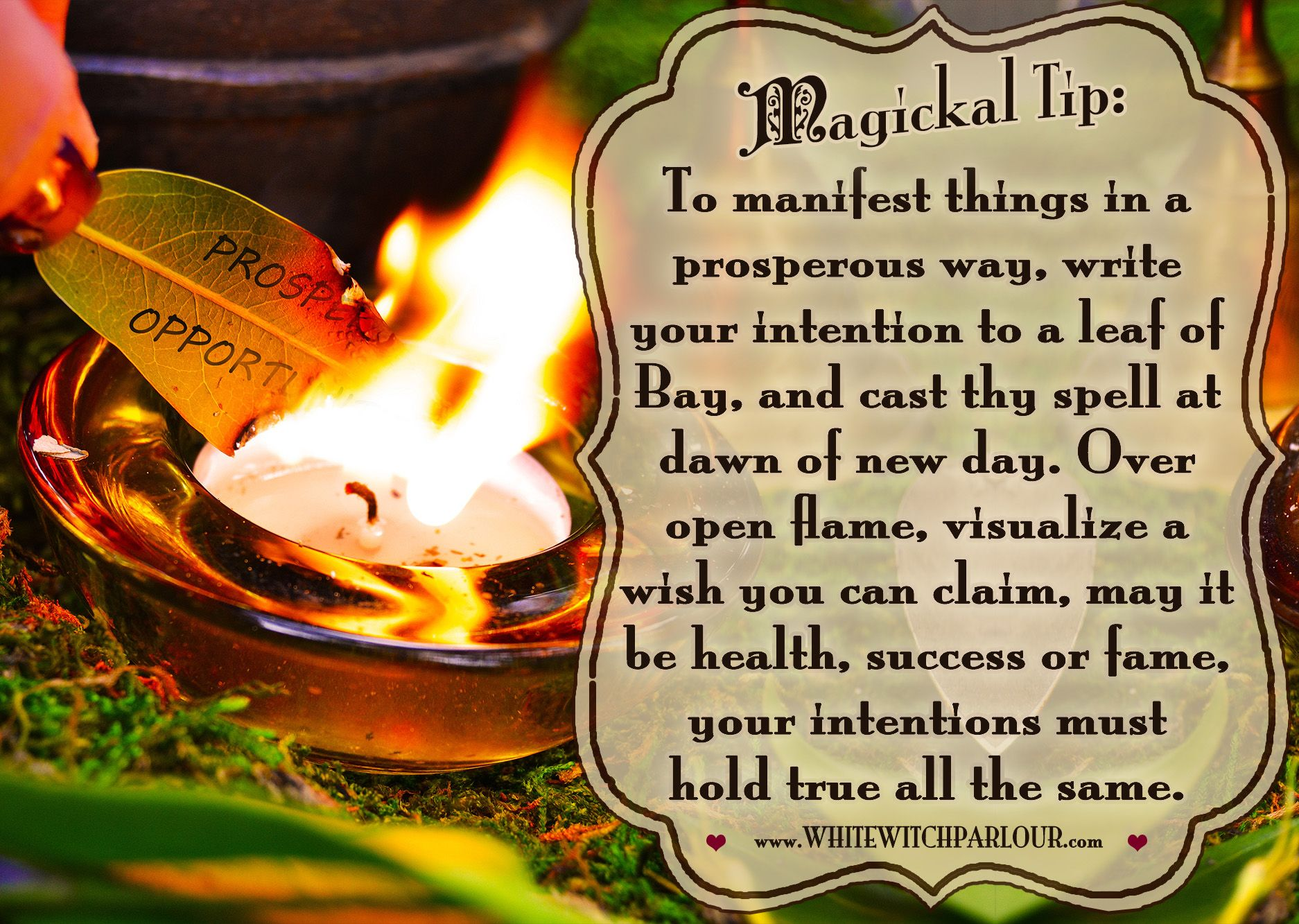 Witch, Spells, White Magick, Manifestation, Manifest, Law Of Attraction,  Book