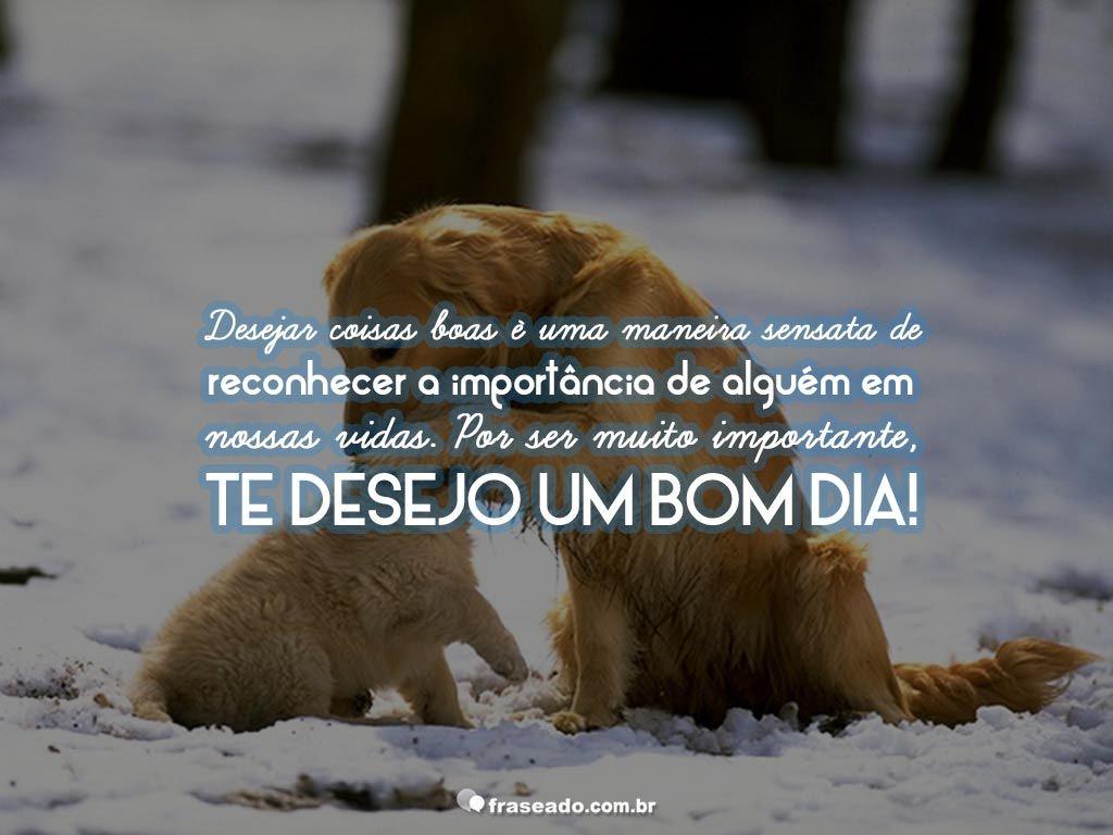 Frases Curtas De Bom Dia: Te Desejo Um Bom Dia…