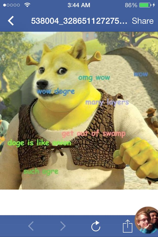 Devil Doge Roblox Pin By Tobias Dahl On Awesome And Funny Picture Mix Doge Shrek Memes Doge Meme