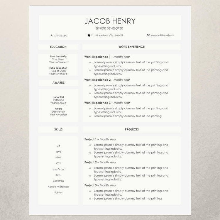 Professional College Resume Entrancing Professional Resumecv Template  Modern Resume And Cover Letter .
