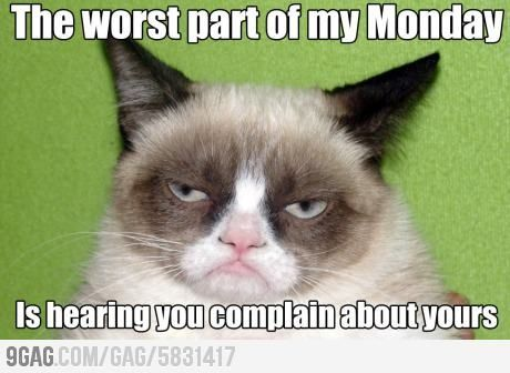 Funny Memes For Bad Days : Yep everyone has bad days if you re busy so is everyone around