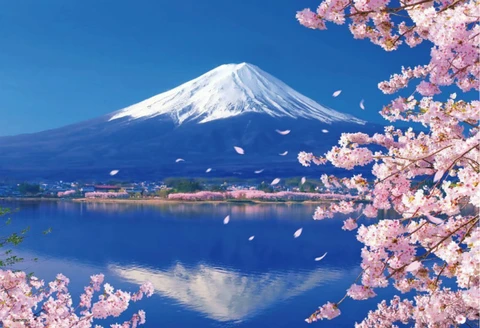 Lake Kawaguchi Cherry Blossom Landscape Paint By Number Numeral Paint Landscape Drawings Landscape Paintings Paint By Number