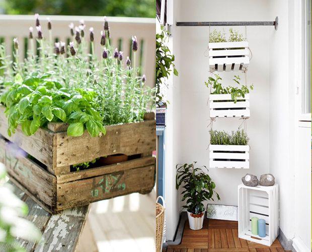 Ideias De Hortas ~ 5 ideias de como fazer uma mini horta para a sua casa Melhorar, Horta e Boa forma