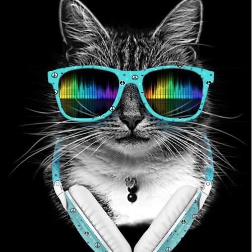 Cool Cat By Julio Cesar Souza Designhill