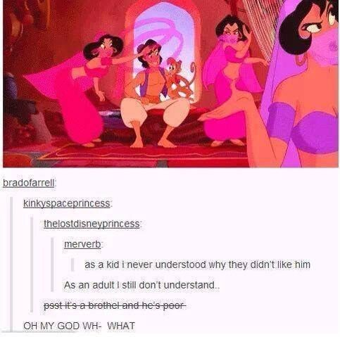 When they discovered exactly why Aladdin might have been getting some stick. | 31 Times Tumblr Had Serious Questions About Disney