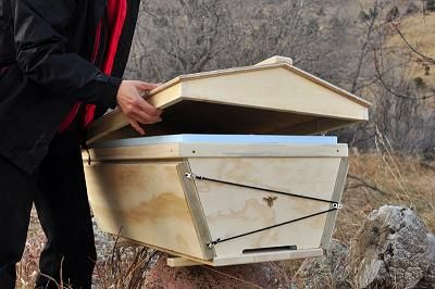 Ordinaire First Bee Inspection   Topbar Hive   May 2010   Part 1 | Top Bar Bees |  Pinterest | Bees, Bee Keeping And Beekeeping