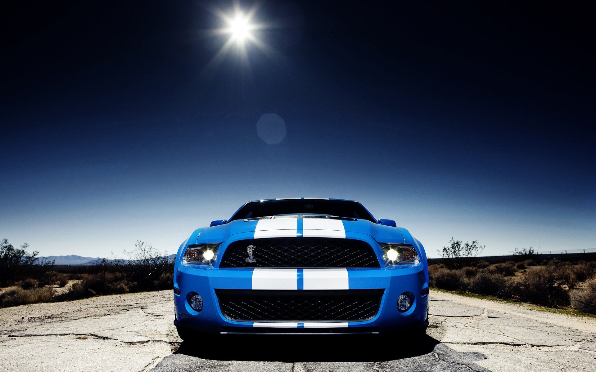 11 ford mustang shelby cobra gt 500 hd wallpapers backgrounds