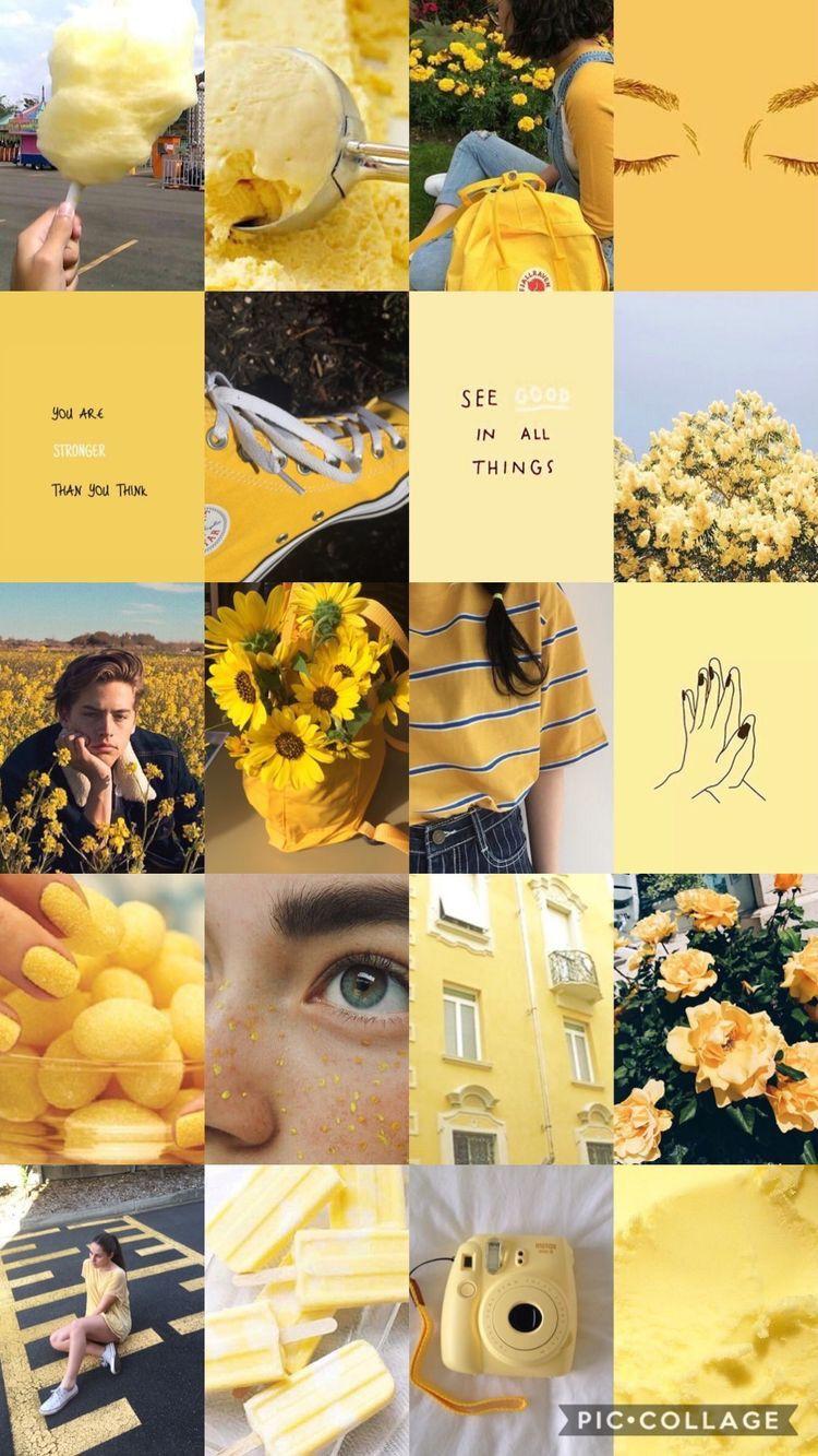 𝚑𝚞𝚗𝚗𝚒𝚎𝚋𝚞𝚖 𝚒𝚜 𝚝𝚢𝚙𝚒𝚗𝚐 Yellow Aesthetic Pastel