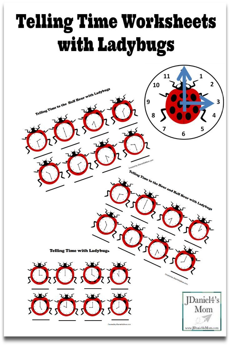 worksheet Ladybug Counting Worksheet telling time worksheets with ladybugs this set contains several clock and a ladybug early learning math pi