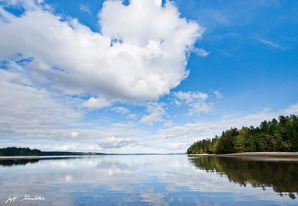 The landscapes and seascapes of Puget Sound are a constant source of inspiration for my photography.  This picture of a tranquil Carr Inlet reflecting the puffy clouds and blue sky was photographed from Penrose Point State Park, Washington State, USA.