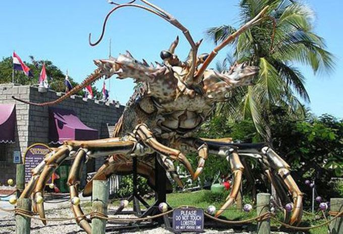 The Biggest In The World Crab