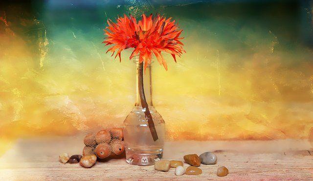 Space (positive & negative in a flower arrangement)