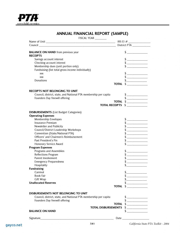 Treasurers Report Template Treasurer Sample Excel