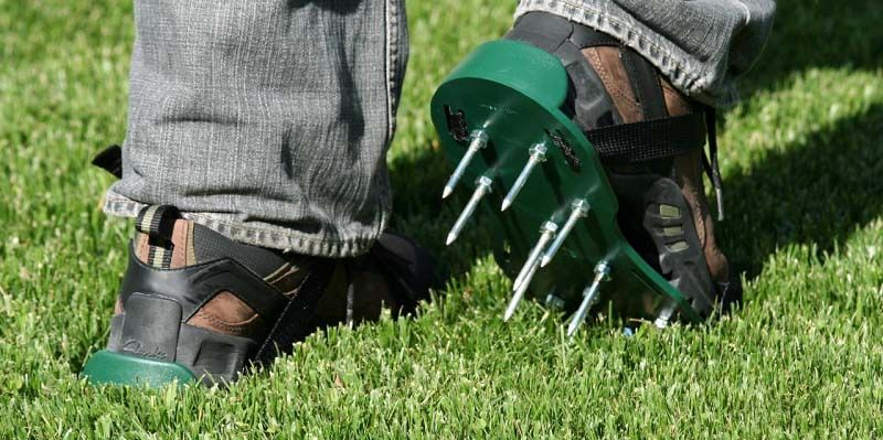Benefits Of Using Lawn Aerator Shoes Aerate Lawn Dethatching Lawn Lawn