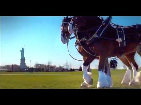 Budweiser Honors 9/11 Victims With This Touching Ad