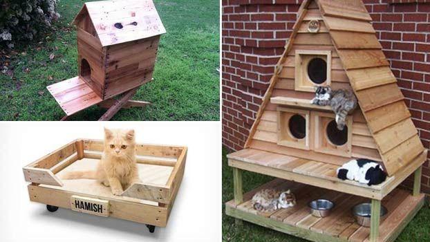 Cucce per gatti da esterno in pallet di legno eco design for Cucce per cani da esterno coibentate