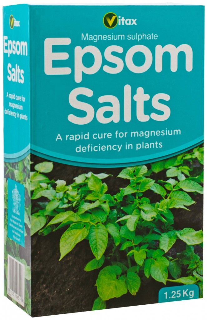 Epsom Salts Magnesium Needed For Chlorophyll Production