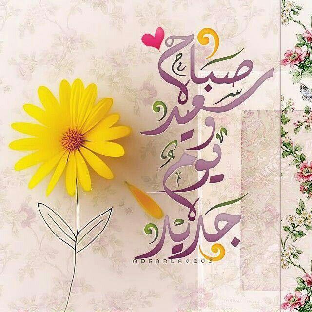 Desertrose كن كالورد لأن الورد من أجمل مافي الحياة فهو يحمل العديد من اللغات الخاصة به الت Morning Greeting Good Morning Wishes Good Morning Arabic