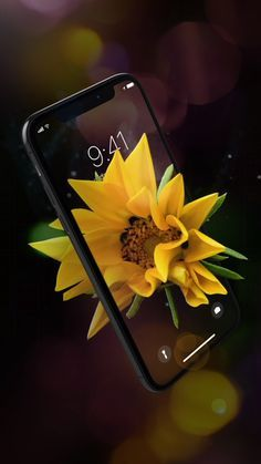 Incredible Live #Wallpapers for your iPhone. Refresh your device with new amazing look every day!