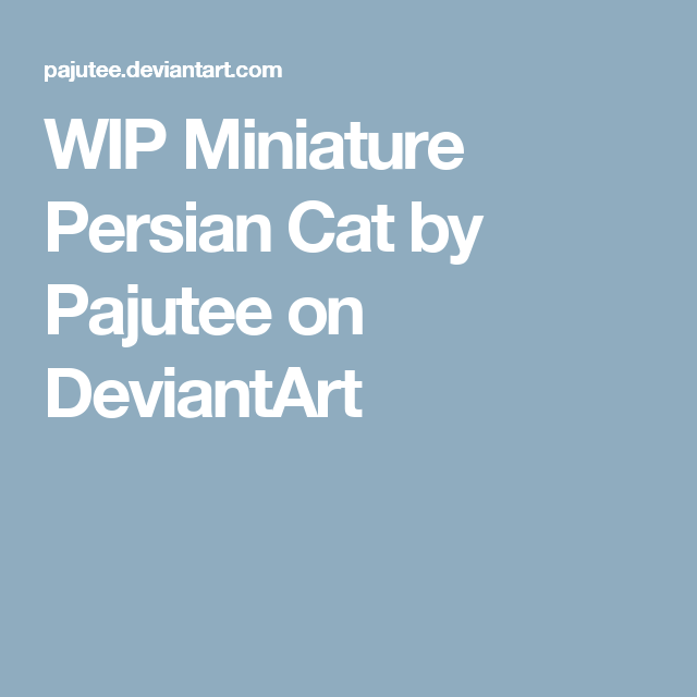 WIP Miniature Persian Cat by Pajutee on DeviantArt