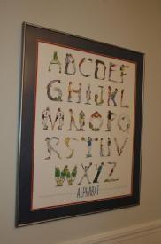 AlphaBAT Framed Picture