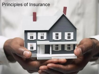 Principles Of Insurance 7 Basic General Insurance Principles