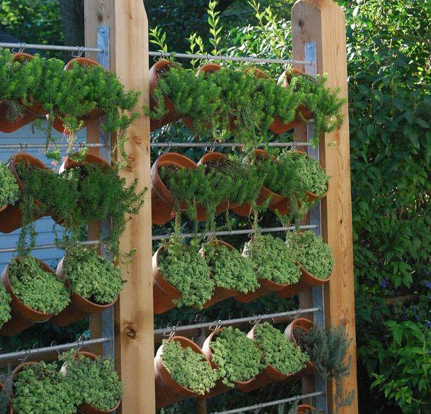 Need Privacy? DIY Garden Privacy Ideas | Pinterest | Yard privacy ...