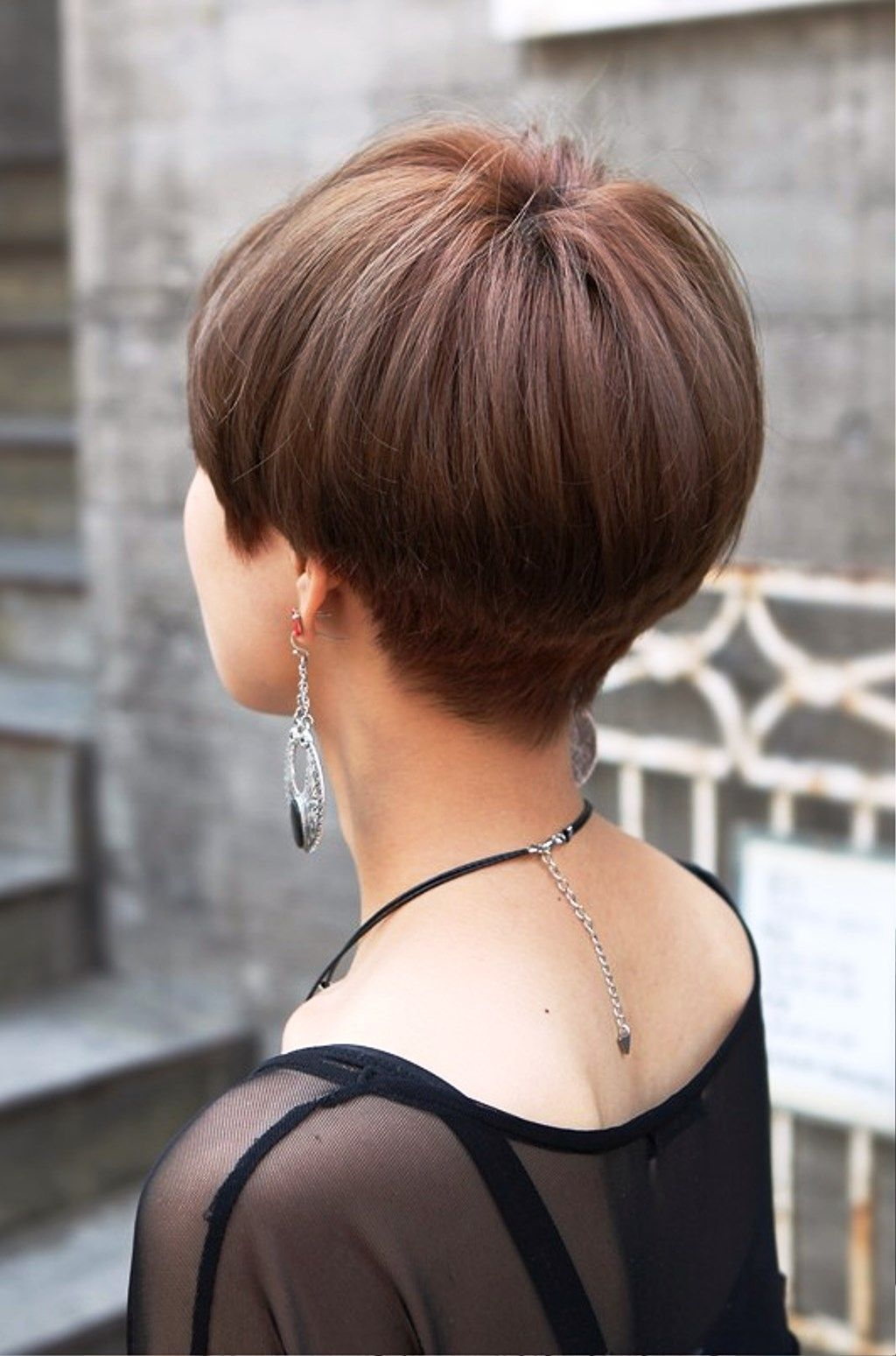 image result for pixie bob haircut back view | vicki | short