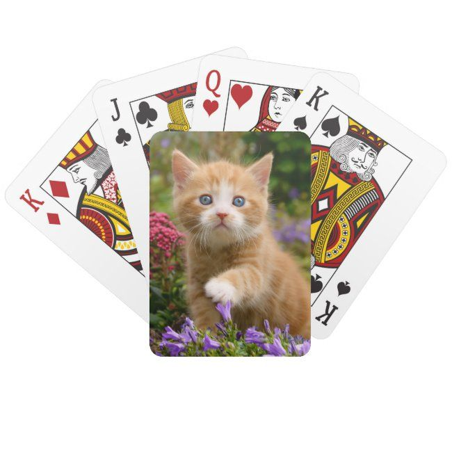 Cute ginger kitten in a garden playing cards | Zazzle.com #gingerkitten