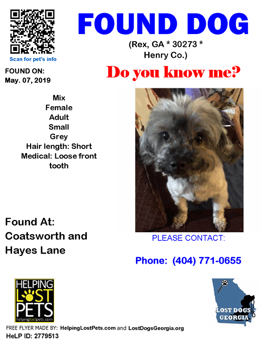 Do You Know This Dog Rex Coatsworth Hayes Lane Ga 30273 Henry Co Dog 05 07 2019 Female Mix Grey No Caller Not Chi Losing A Dog Dogs Losing A Pet