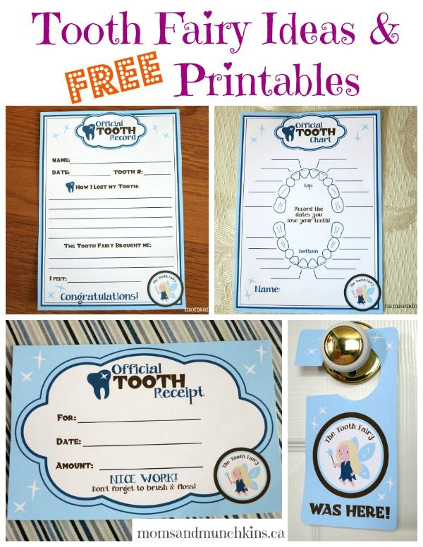 Printable letters for boys tooth fairy pictures to pin on for Fairy letter ideas