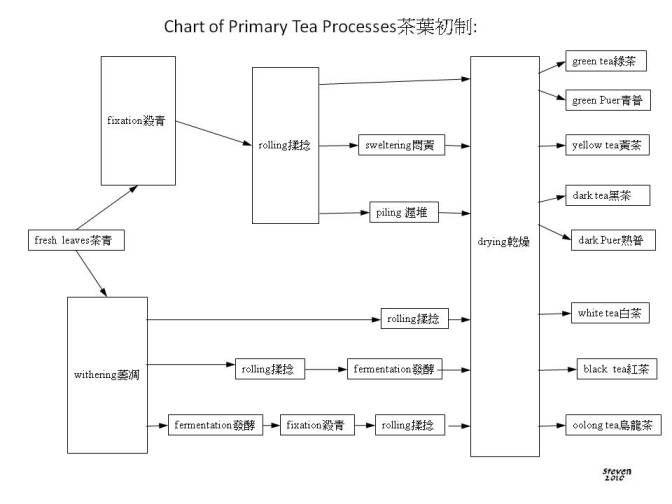 Tea Arts 茶藝: Tea Terms 2010 中英文茶術語