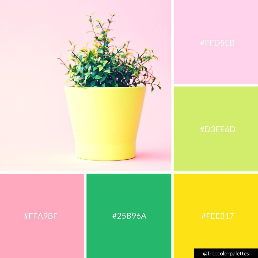 Happy Color Website You'll Love