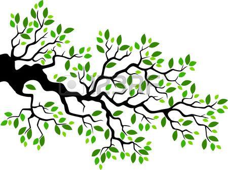 Coloriage Arbre Branche.Stock Photo En 2019 Faire Part Naissance Leaves Tree Branches
