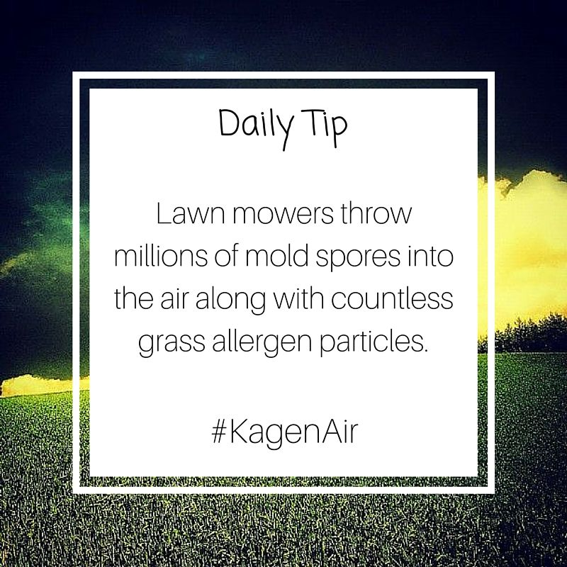 Lawn mowers throw millions of mold spores into the air