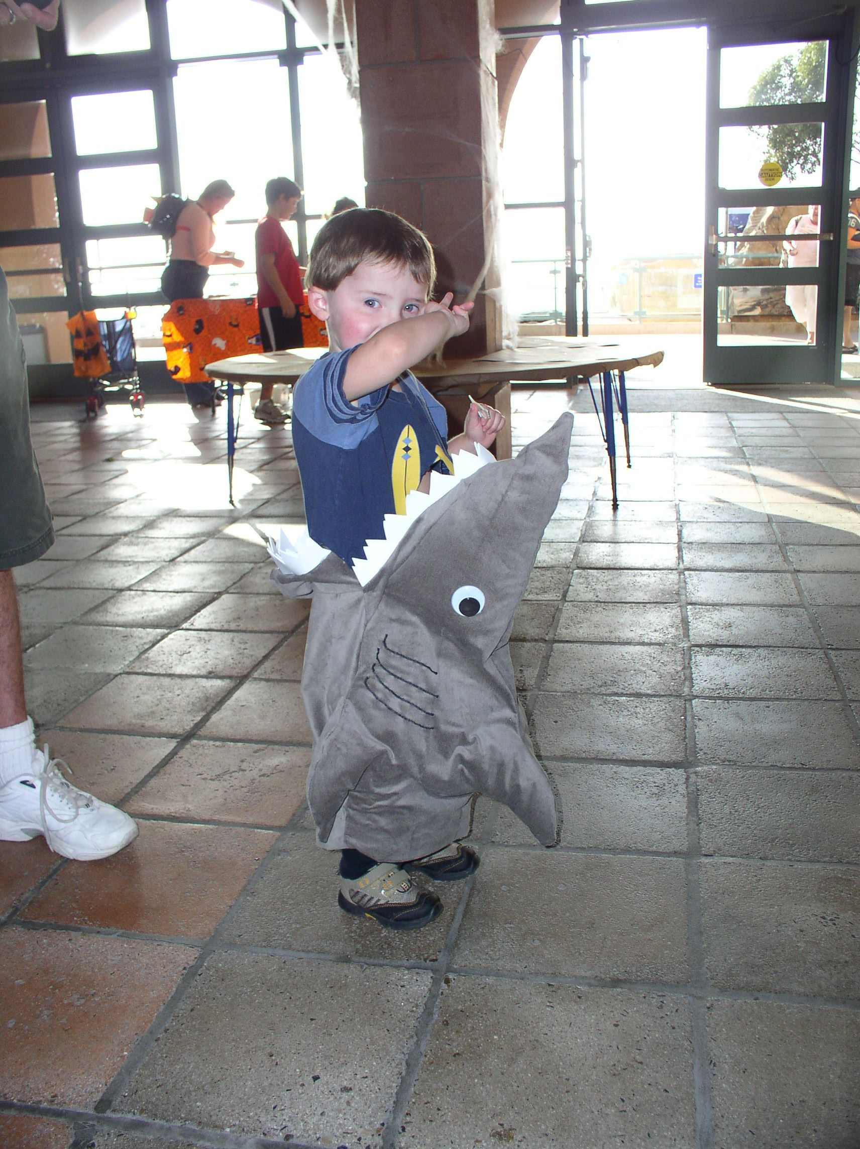 Simple shark i sewed onto my kids shirt he loved this costume