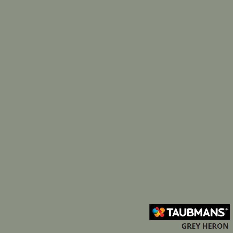 #Taubmanscolour #greyheron