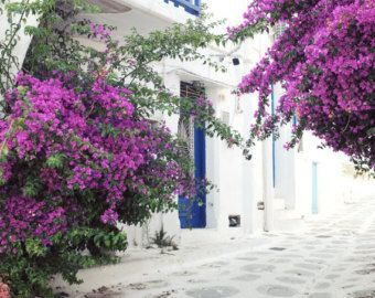 Greece photography  white blue wall art  narrow street
