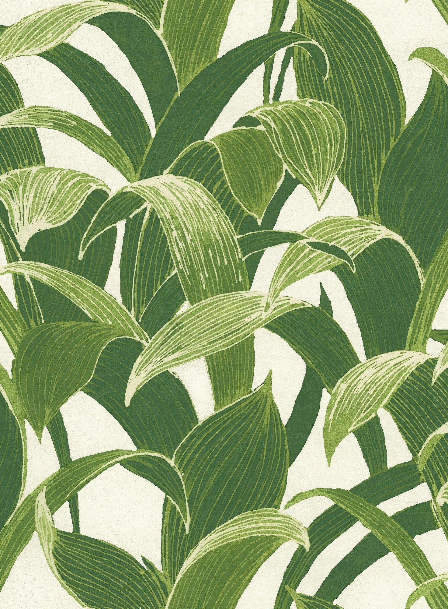 Tropical Banana Leaves Peel Stick Wallpaper Gw1004 Green Seabrook Designs Peel And Stick Wallpaper Leaf Wallpaper
