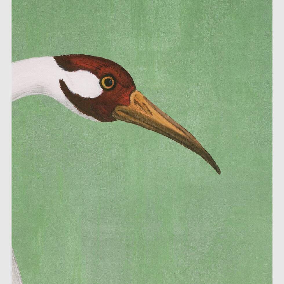 Shop the Heron print wallpaper at Enjoy Free