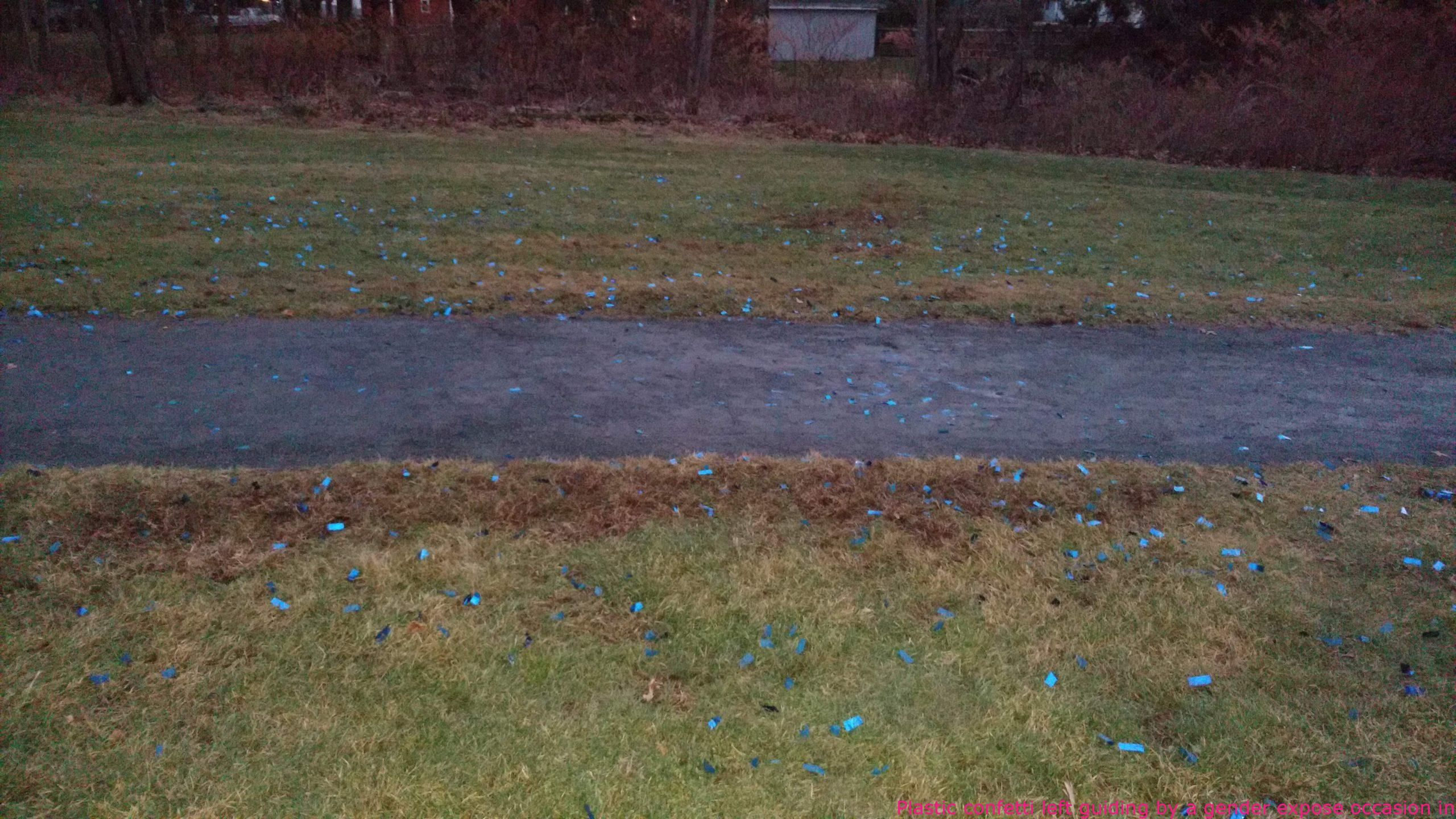 Midly Infuriating Things Plastic Confetti Left Guiding By A Gender Expose Occasion In A Picture Fails Funny Pictures Fails Epic Fail Photos