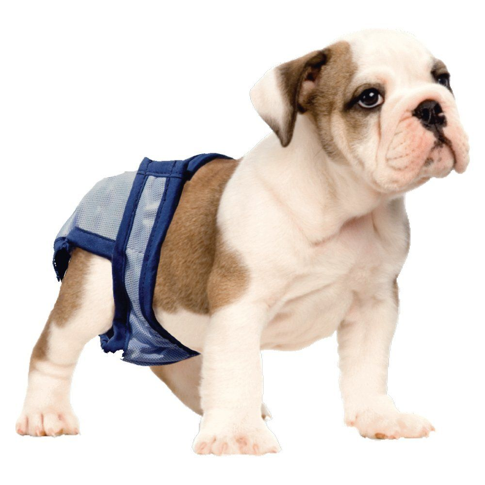 """600-17x24/"""" Quilted Puppy Training Pee Pads EXTRA ABSORBENT Incontinence Pad 20gr"""