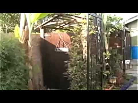 A horta de 400m² da familia Dervaes - (Narrado em português)