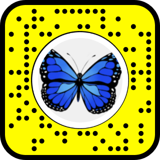Snap To Unlock Snapchat Blue Butterfly Butterfly Snapchat Filters