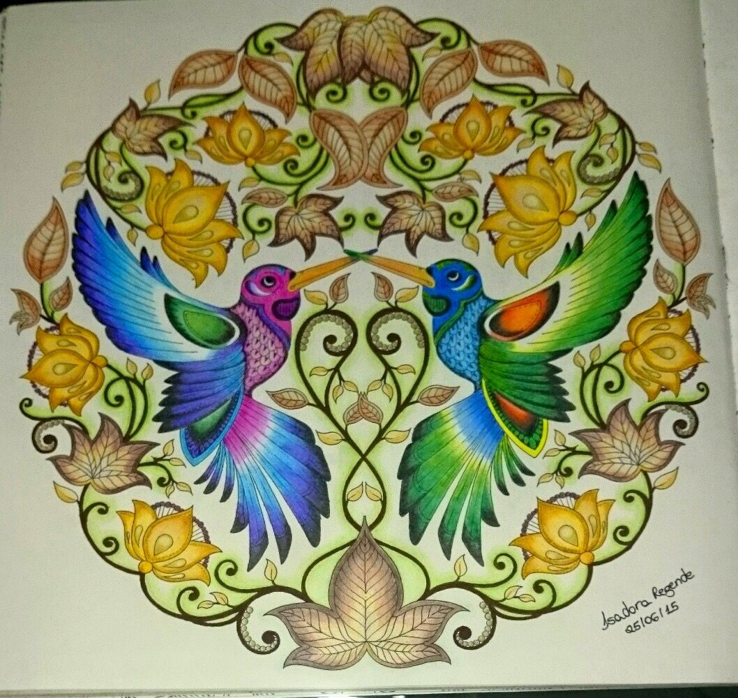 Coloring Books Humming Birds Secret Garden Beija Flores Jardim Secreto Johanna Basford