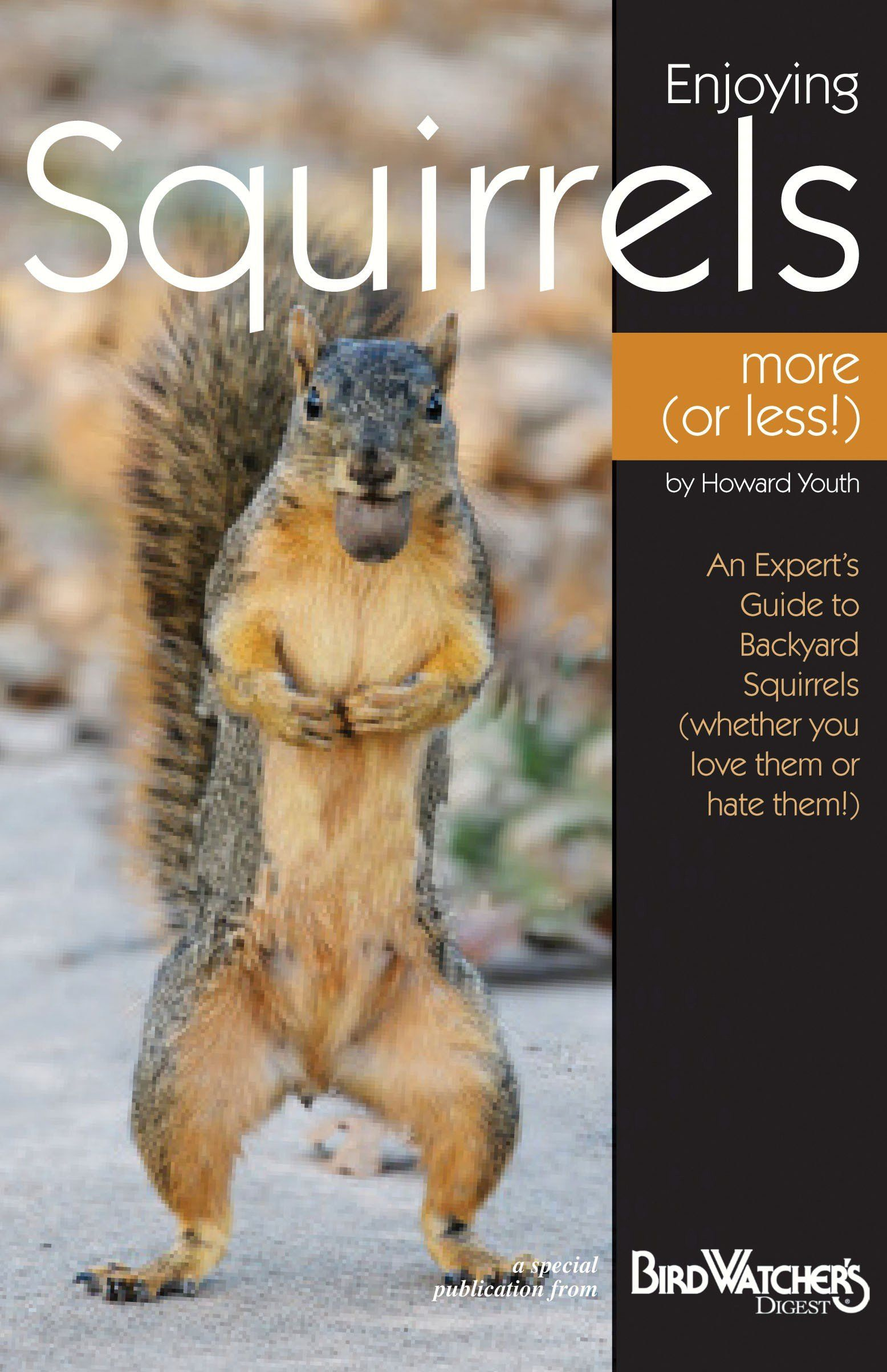 Enjoying Squirrels More (Or Less) Book Products