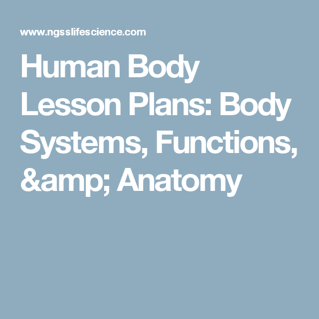 Human Body Lesson Plans Body Systems Functions Anatomy