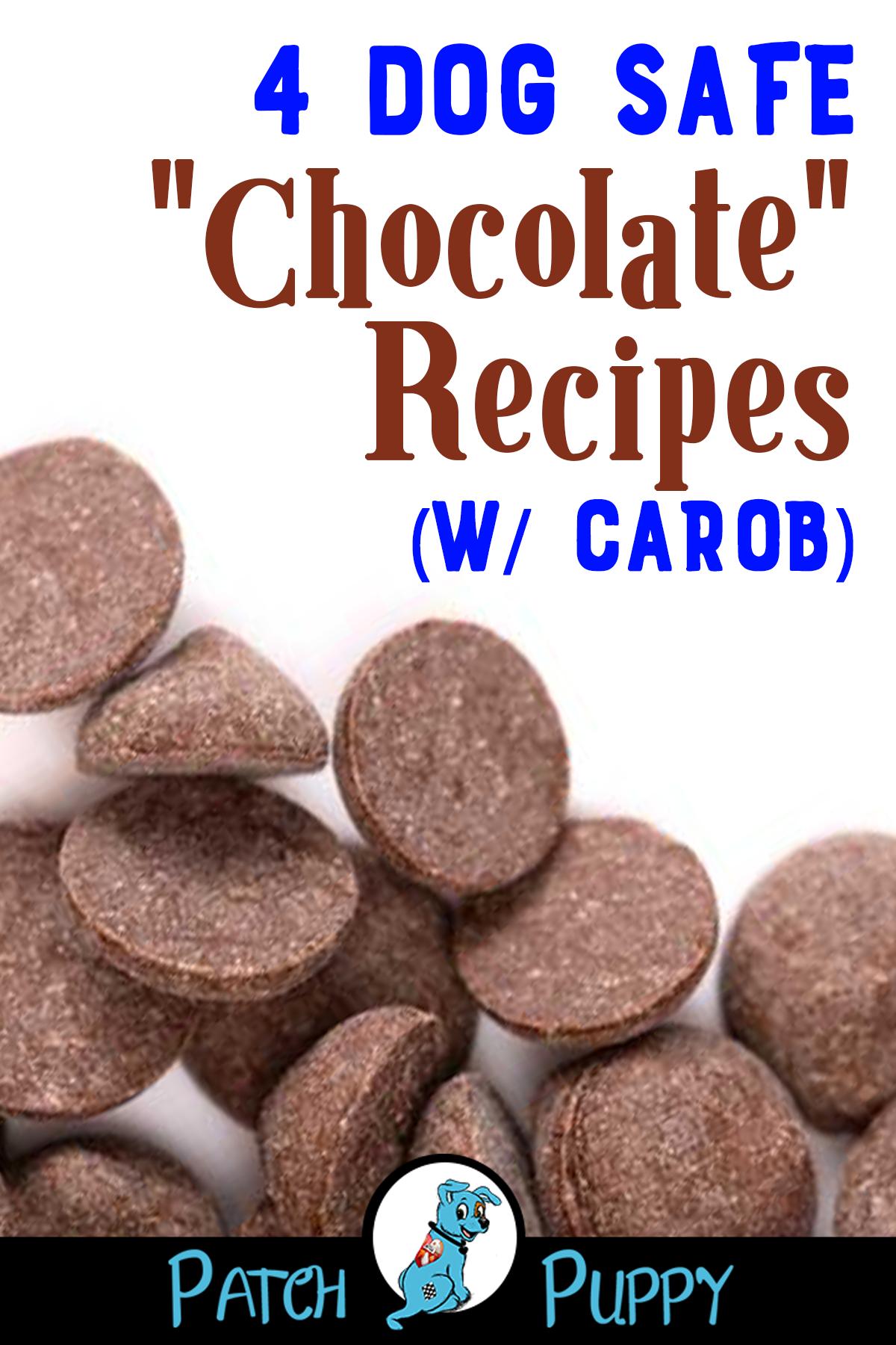 4 Dog Safe Chocolate Recipes W Carob Patchpuppy Com Dog Safe Cake Recipe Dog Cake Recipes Chocolate Dog