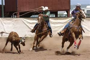 I grew up being my Dad's team roping partner & roped in high school rodeos and at a few jackpots around the area.  Fun.  Hot.  Dirty.